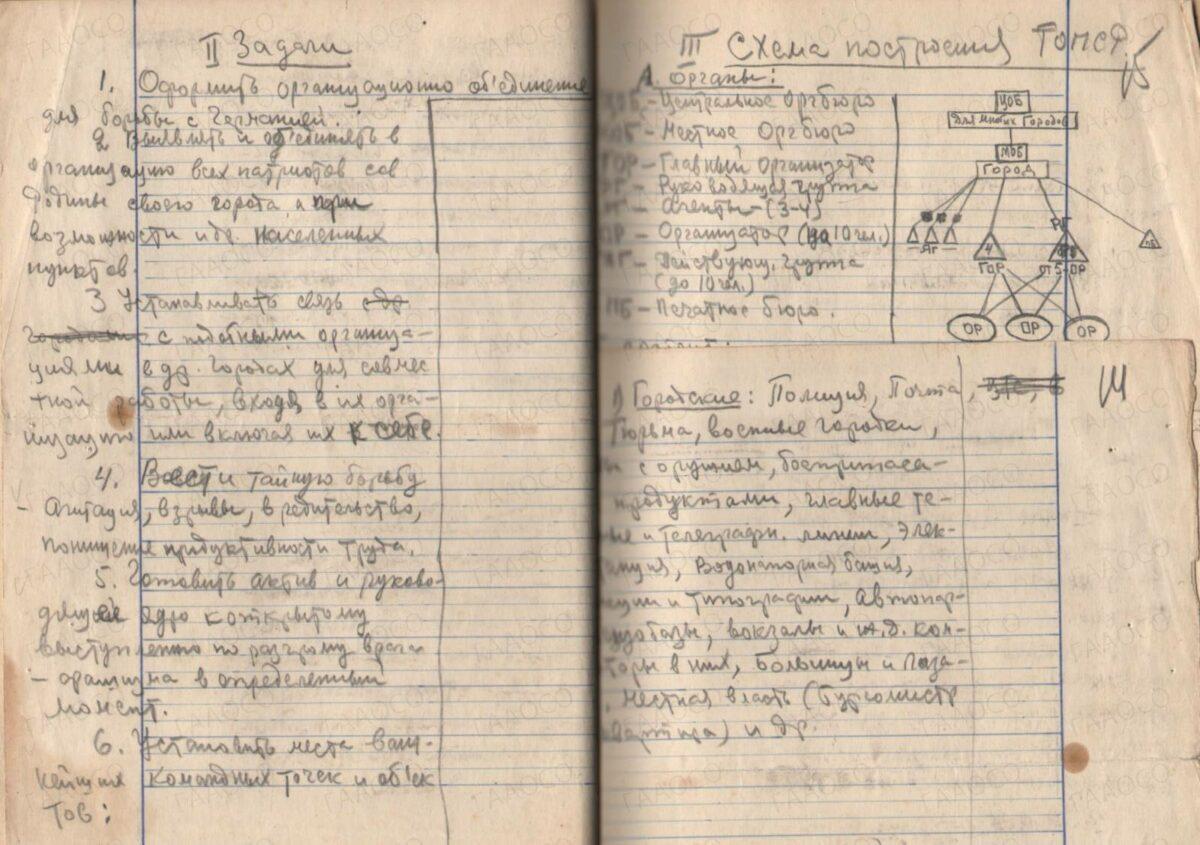 Задачи и схема построения «Организация Патриотов Советской Родины»